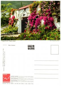 SPAIN Postcard Canary Islands -Entrance to Country Residence Typical Scene (A10)