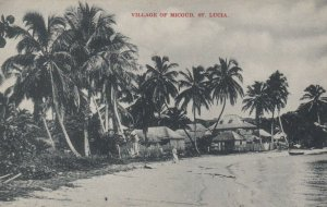 ST. LUCIA , 00-10s ; Village of Micloud