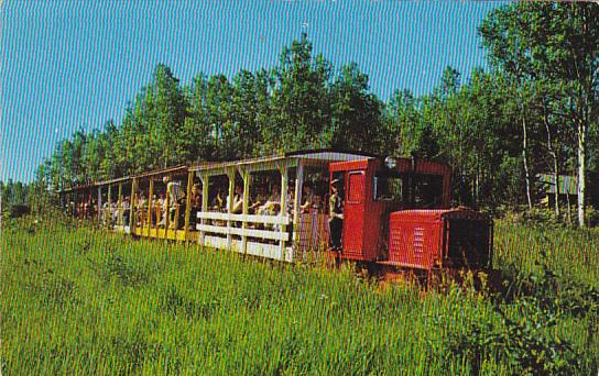The Toonerville Trolley