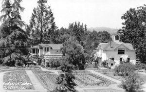 RPPC BURBANK GARDEN Santa Rosa, CA Patterson Photo c1930s Vintage Postcard