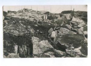 172283 WWI BELGIUM Defenders of Fort Loncin Vintage photo PC