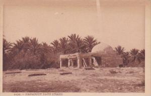 Algeria Marabout Dans L'Oasis