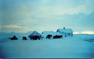 Iceland Hella Icelandic Farm In Winter