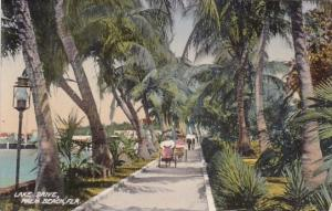 Florida Palm Beach Lake Drive