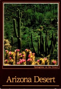 Arizona Springtime In The Desert Showing Hedgehog Cactus and Organ Pipe Cactu...