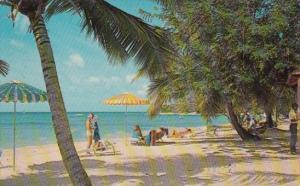 Barbados White Sand At Paradise Beach