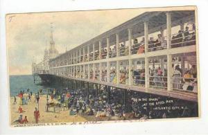 88 in the Shade / Pier,Atlantic City,NJ 1905 PU