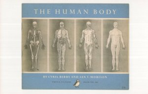 The Human Body Cyril Bibby 1955 Puffin Book Postcard