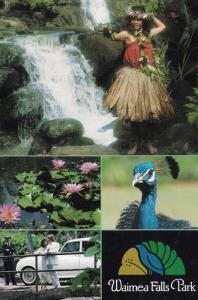 HALEIWA,Hawaii 1988 Waimea Falls Park