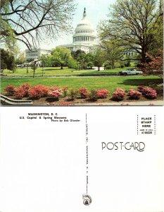 U.S. Capitol & Spring Blossoms, Washington D.C.