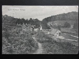 Surrey COLDHARBOUR Village View c1904 Old Postcard