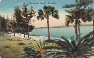 Bermuda Harrington Sound