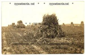RPPC, Corn Stock Piles, unknown