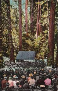 California Russian River Concert In Bohemian Grove