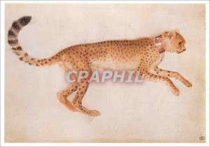 Modern Postcard Leaping Cheetah Profile Right and to the Louvre Wearing a Red...