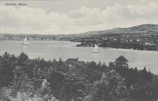 Maine Bluehill Albertype