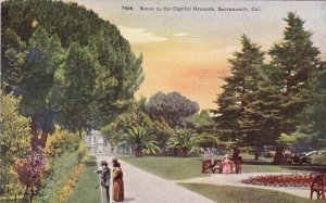 Scene In The Capitol Grounds Sacramento California