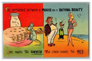1943 Difference Between Mouse And Bathing Beauty Vintage Standard View Postcard