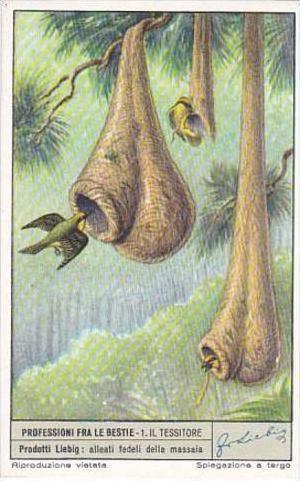 Liebig Trade Card S1519 Occupations For Animals No 1 Il Tessitore