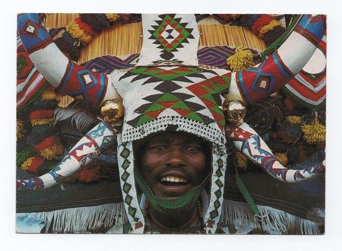 POSTCARD 1970years SOUTH AFRICA BLACK NATIVE DANCER COW BULL COWS OX COW OXEN