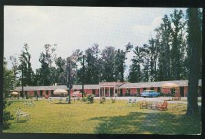 Motel Charleston Motor Court South Carolina SC 1950's Postcard