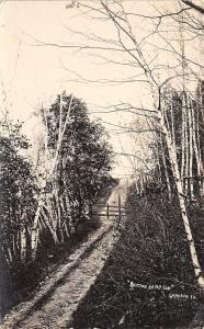 Lansina Iowa~Birches On Mt Ida~Gate Blocks Grassy Road c1913 RPPC