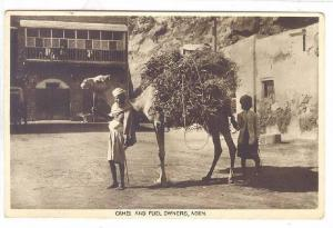 RP: ADEN , Yemen , 00-10s ; Camel & Fuel Owners