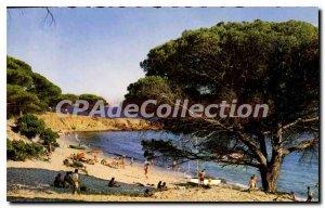 Modern Postcard From The Beach Porto Vecchio Palombaggia