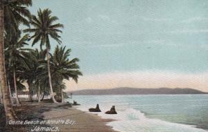 On the Beach at Antonio Bay , Jamaica , 1901-07