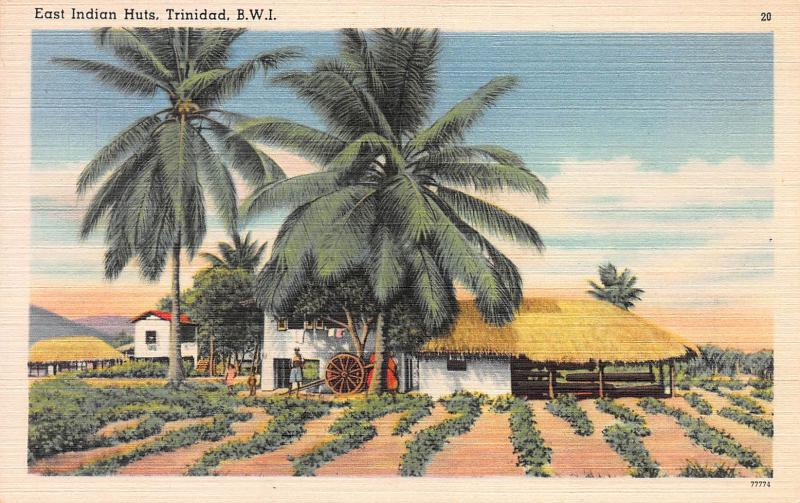 East Indian Huts, Trinidad, British West Indies, Linen Postcard, Used in 1954