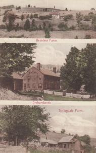WOODSTOCK, Vermont, 1900-1910s; Reindeer Farm, Orchardlands & Springdale Farm