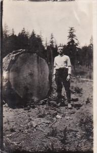 Trees Man Standing Beside Giant Log Real Photo