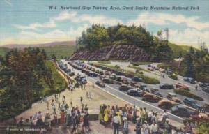 Newfound Gap Parking Area Great Smoky Mountains National Park Curteich