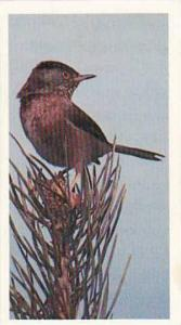 Grandee Vintage Cigarette Card Britains Endangered Wildllife No 23 Dartford W...