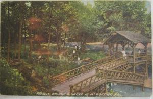 Rustic Bridge & Grove Mt Pocono PA