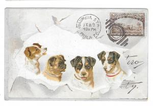 Chicago Cottage Organs Victorian Trade Card Dogs Postcard