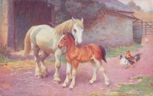 Postcard Animals horse and poney rooster chicken painting farm scene