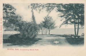 ORILLIA , Ontario , Canada , 1900-10s ; Couchiching Beach Park # 2