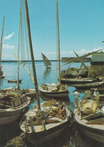 Brazil Salvador Harbour Boats Brazil Postcard