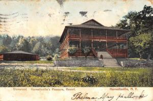 Hornellsville New York Pleasure Resort Street View Antique Postcard K83540