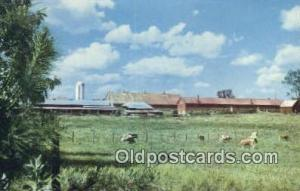 Placid Oaks Farms