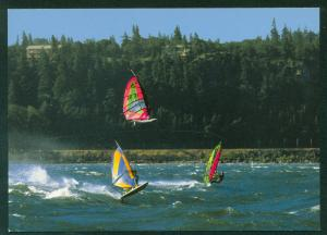 Windsurfer Columbia River Gorge Hood River Oregon Windsurfing Postcard