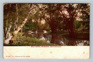 Chicago IL-Illinois, Salt Creek, Scenic Riverside Park, Vintage c1910 Postcard