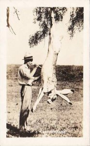 Texas Hnter Skinning A Large Texas Jack Rabbit 1945 Real Photo