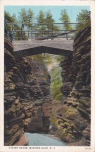 Cavern Gorge Watkins Glen New York Curteich
