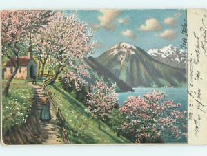 Pre-1907 WOMAN ON PATH BY CHURCH UNDER PINK FLOWERING TREES HJ4538