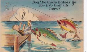 Fishing Humour Boy Do These Babirs Go For Live Bait Up Here