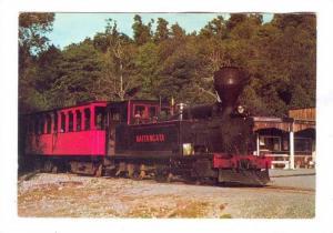 Shantytown train, New Zealand, 50-70s