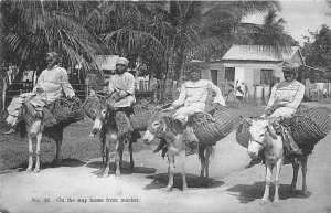 Jamaica, Jamaique Post card Old Vintage Antique Postcard On the Way Home From...
