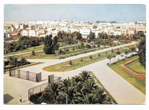 Tunisia Tunis Park Jardin Habib Thameur Postcard Sc 357